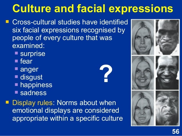 cultural differences in facial expressiveness essay Although facial expressions are the same among the gender while conveying emotions, a minor difference was discovered between females and girls in the horizontal once more, concurrent translators are restricted in the chance of cultural transmission for they are unable converse visually in their booth and explain the.