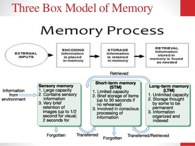 Image result for three box model of memory