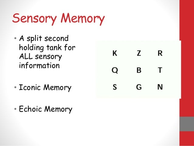 Chapter 6- Memory - Educational Psychology 101 with ... |Sensory Memory Examples Psychology