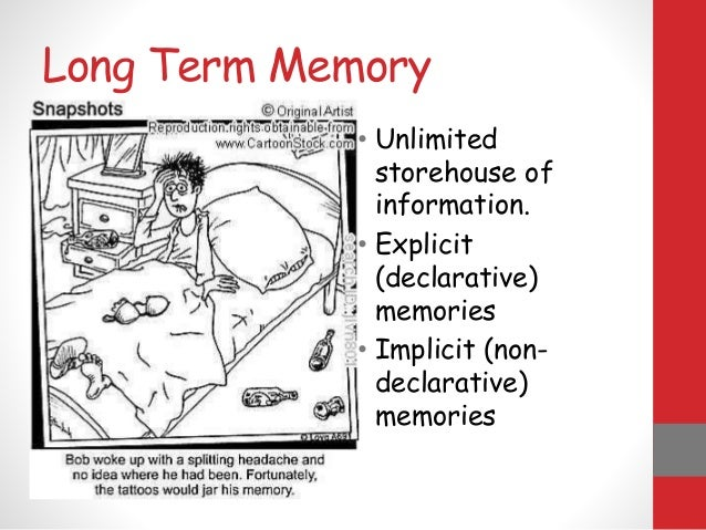 essays on memory and learning