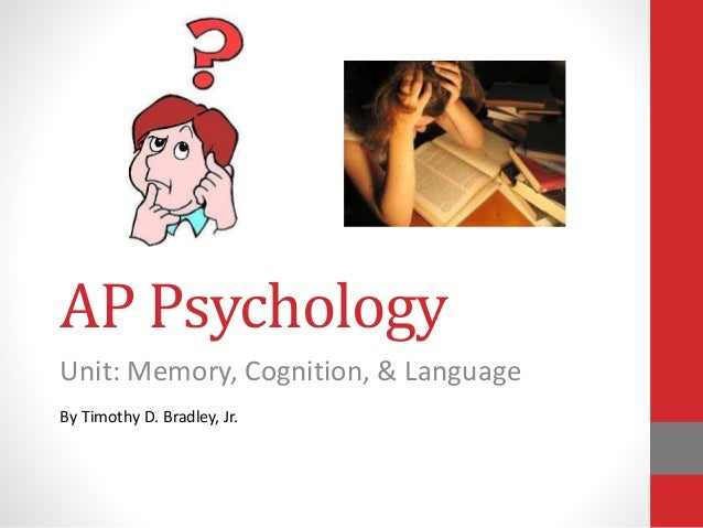 ap psychology essays on memory Start studying ap psychology essay review learn vocabulary, terms, and more with flashcards, games, and other study tools.