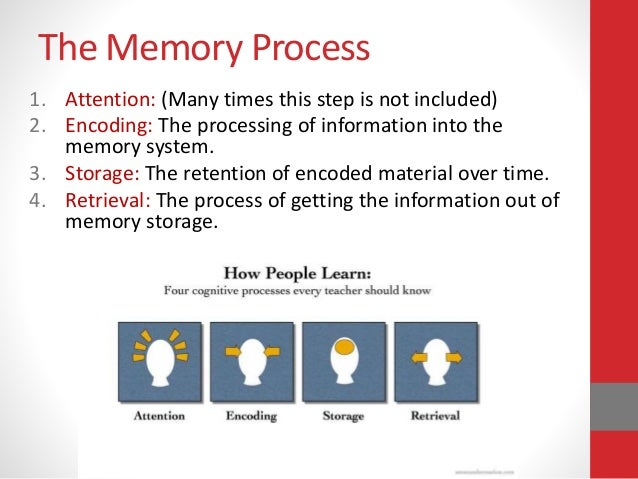 explaining flash memory from a psychological point of view O ften, the mind played tricks - with people reliving their own experiences from the point of view of others who had been involved the study found that many of the flashbacks involved intensely emotional moments researchers from hadassah university in jerusalem analyzed seven accounts of such experiences, obtained from in-depth.