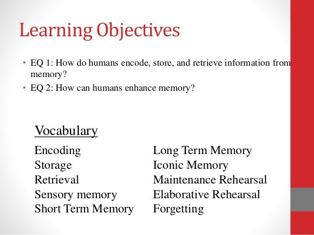 the effect of chunking on memory recall in stm essay The effects of note taking and mental rehearsal on memory memory, the ability to retain and recall past experience, is short-term memory.
