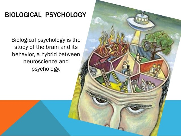 psychology perspectives The perspective of psychology are 1 neuroscience this perspectives looks inside the body, at substances such as hormones, drugs, and neurotransmitters, and at inter nal organs, especially the brain and its structures.