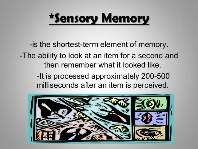 Psychology memory power point |Sensory Memory Examples Psychology