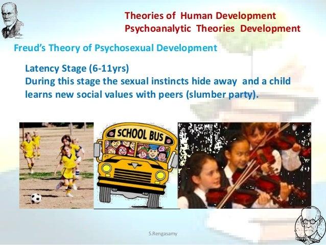 Term paper on developmental theories