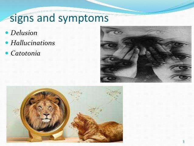 signs and symptoms  Delusion  Hallucinations  Catotonia 3
