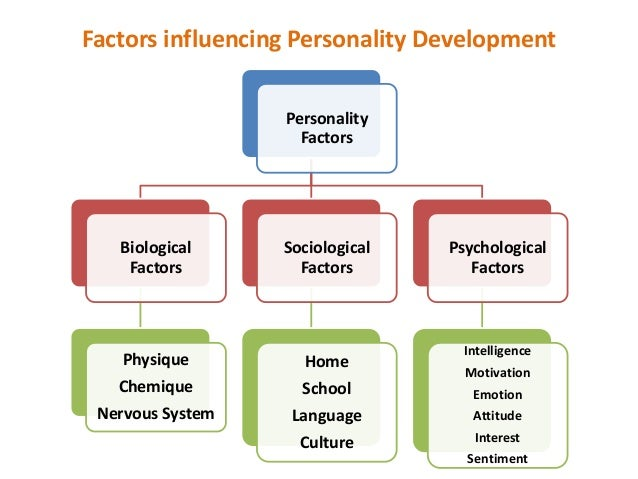 personal and external factors affecting child development