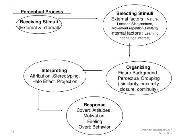 how perceptual process effects the way in which judgements of others is made essay It is just not possible to control the perception of others  the way in which you  perceive your world also impacts your general emotional state.