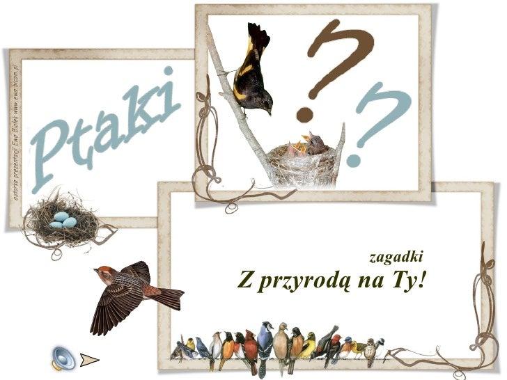 <ul><li>zagadki  Z przyrodą na Ty! </li></ul>