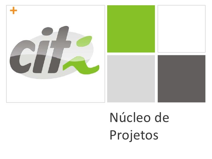 Núcleo de Projetos<br />