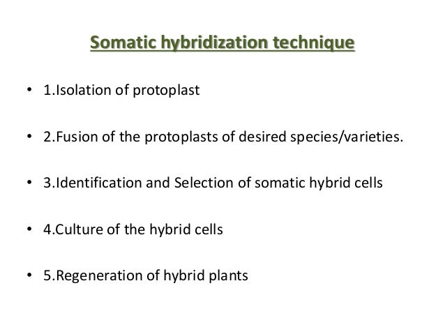 Somatic hybridization ppt video online download.