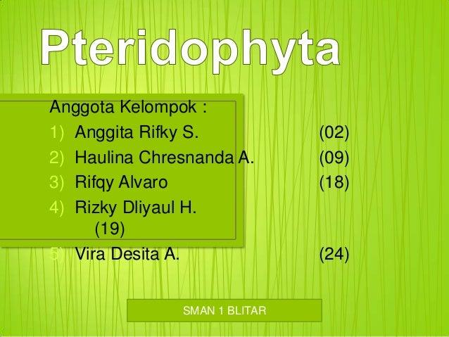 Anggota Kelompok : 1) Anggita Rifky S. 2) Haulina Chresnanda A. 3) Rifqy Alvaro 4) Rizky Dliyaul H. (19) 5) Vira Desita A....