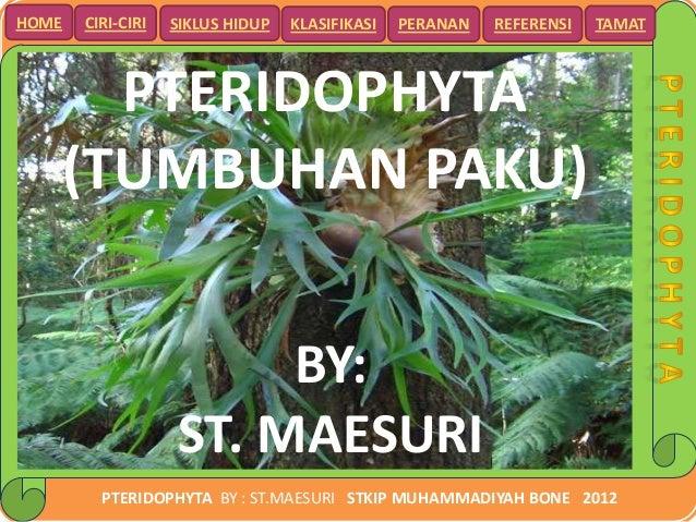 HOME   CIRI-CIRI   SIKLUS HIDUP   KLASIFIKASI   PERANAN   REFERENSI   TAMAT     PTERIDOPHYTA   (TUMBUHAN PAKU)            ...