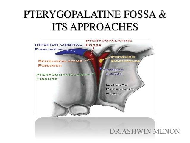 PTERYGOPALATINE FOSSA & ITS APPROACHES DR.ASHWIN MENON