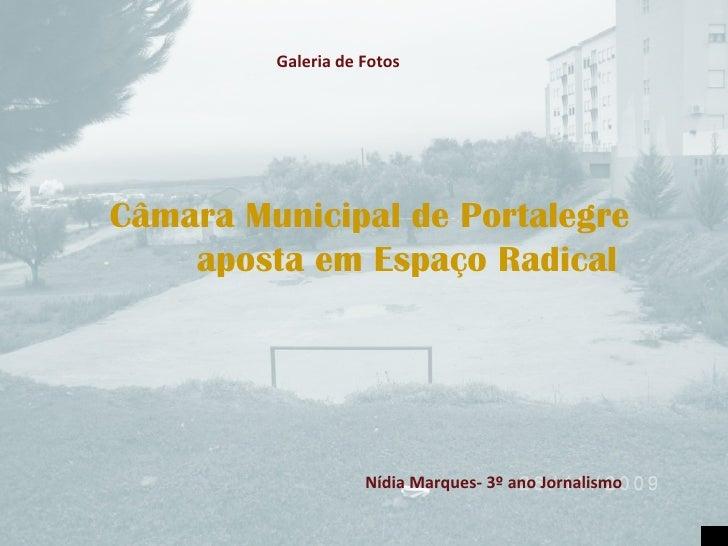 Câmara Municipal de Portalegre  aposta em Espaço Radical Nídia Marques- 3º ano Jornalismo Galeria de Fotos