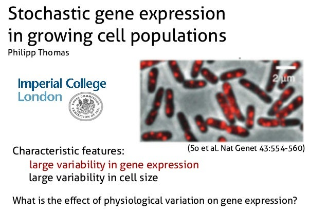 Characteristic features: large variability in gene expression large variability in cell size What is the effect of physiolo...