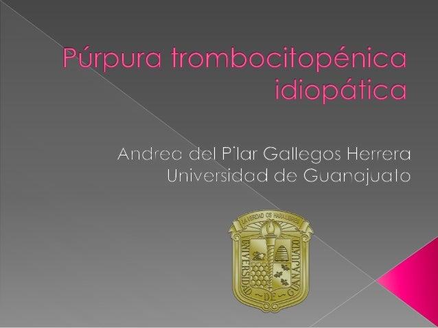  Trastorno adquirido caracterizado por trombocitopenia aislada y ausencia de otras anomalías que causen trombocitopenia ...