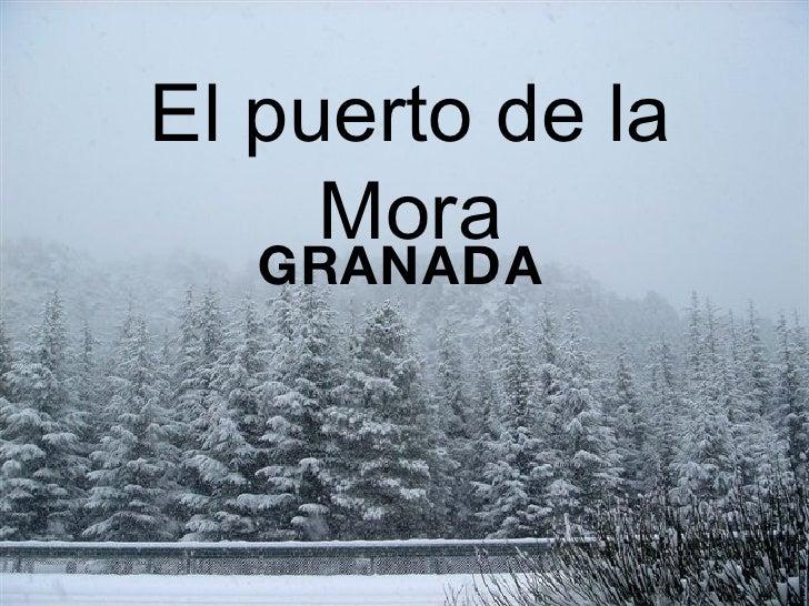 El puerto de la Mora GRANADA