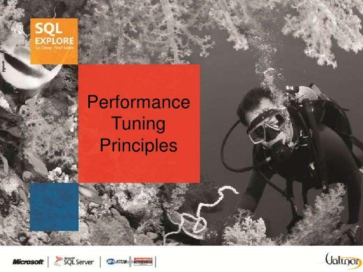 Performance  Tuning Principles