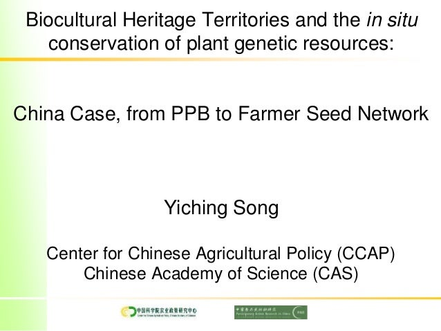 Biocultural Heritage Territories and the in situ conservation of plant genetic resources: China Case, from PPB to Farmer S...