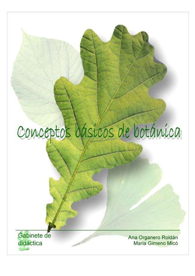 Conceptos básicos de botánica  CONCEPTOS BÁSICOS DE BOTÁNICA 1. INTRODUCCIÓN 2. VARIEDAD DE PLANTAS. Clasificación de plan...
