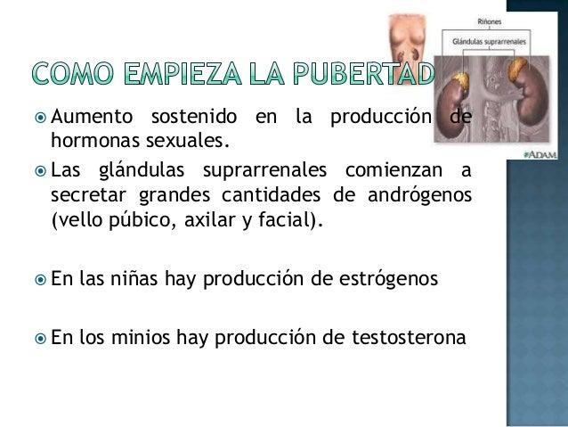 Pubertad Slide 2