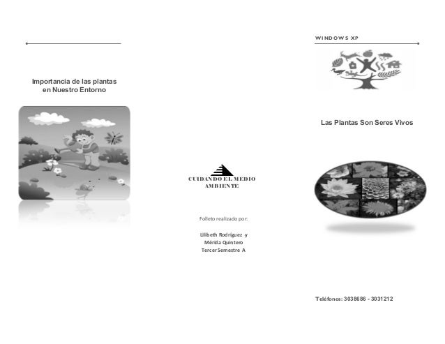 Folleto realizado por: Lilibeth Rodríguez y Mérida Quintero Tercer Semestre A Teléfonos: 3038686 - 3031212 Las Plantas Son...
