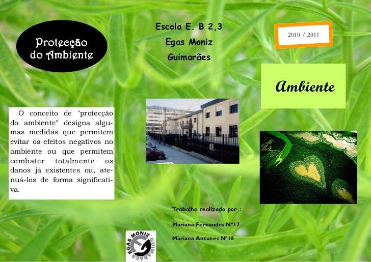 Escola E. B 2,3                                                                2010 / 2011      Protecção                 ...