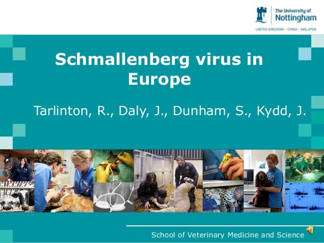 Schmallenberg virus in          EuropeTarlinton, R., Daly, J., Dunham, S., Kydd, J.                   School of Veterinary...
