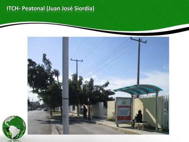 ITCH- Peatonal (Juan José Siordia)