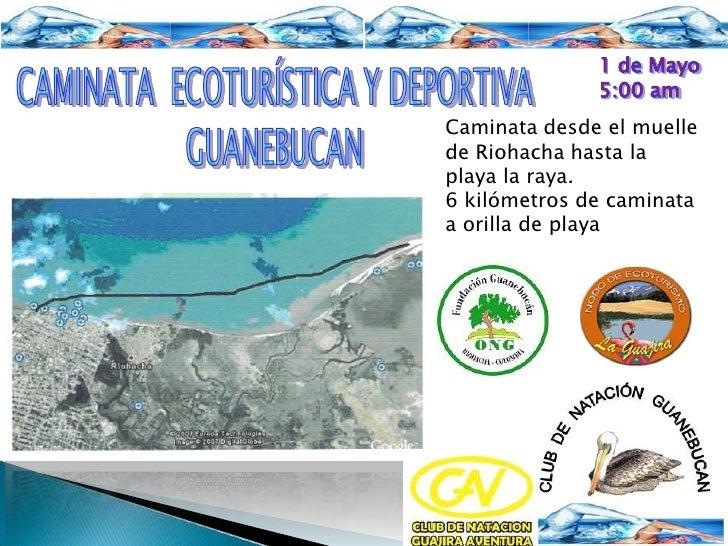1 de Mayo<br />5:00 am<br />CAMINATA  ECOTURÍSTICA Y DEPORTIVA <br />GUANEBUCAN <br />Caminata desde el muelle de Riohacha...