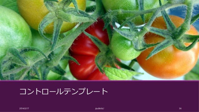 コントロールテンプレート 2014/5/17 /publish// 36