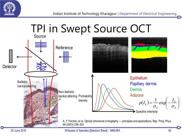 TPI in Swept Source OCT Whispers of Speckles [Debdoot Sheet] - WMLMIA 45 Source Ballistic backscattering Non-ballistic bac...