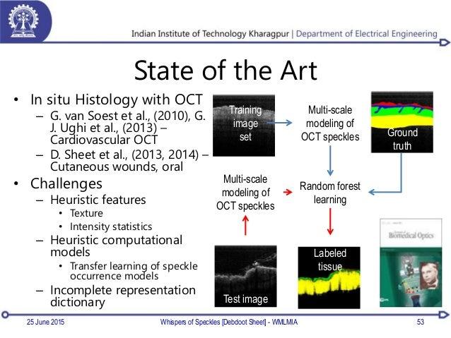 State of the Art • In situ Histology with OCT – G. van Soest et al., (2010), G. J. Ughi et al., (2013) – Cardiovascular OC...