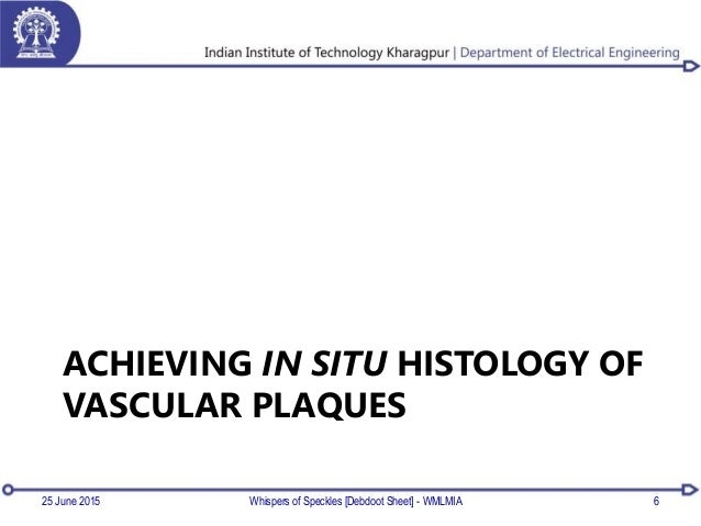 ACHIEVING IN SITU HISTOLOGY OF VASCULAR PLAQUES 625 June 2015 Whispers of Speckles [Debdoot Sheet] - WMLMIA