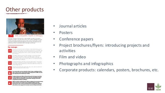 Other products • Journal articles • Posters • Conference papers • Project brochures/flyers: introducing projects and activ...