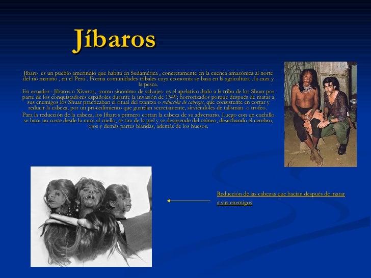 Jíbaros Jíbaro   es un pueblo amerindio que habita en Sudamérica , concretamente en la cuenca amazónica al norte del rió m...