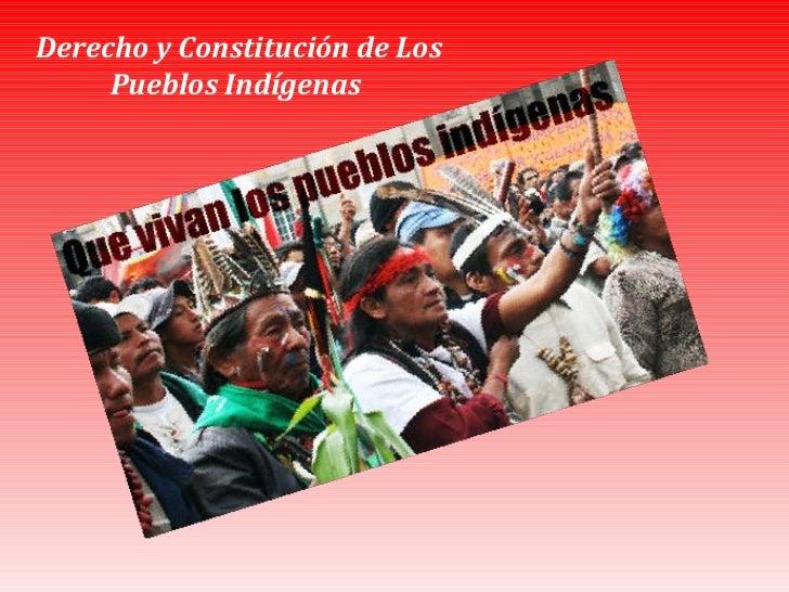 Derecho y Constitución de Los Pueblos Indígenas