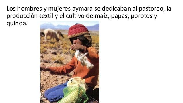 Pueblos originarios del norte for Terrazas 14 vicuna