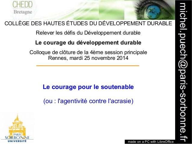 1  COLLÈGE DES HAUTES ÉTUDES DU DÉVELOPPEMENT DURABLE  Relever les défis du Développement durable  Le courage du développe...