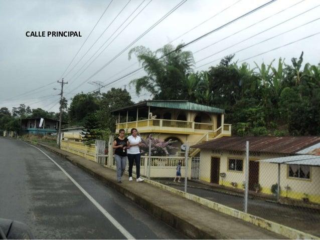 PUENTE SOBREEL RIO PUEMBO