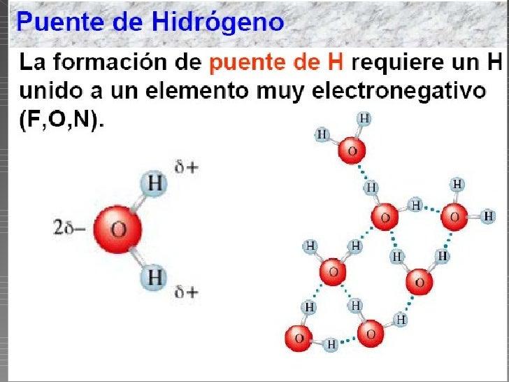 El puente de hidrógeno se describe frecuentemente como una interacciónelectrostática, dipolo-dipolo. Sin embargo, tiene al...