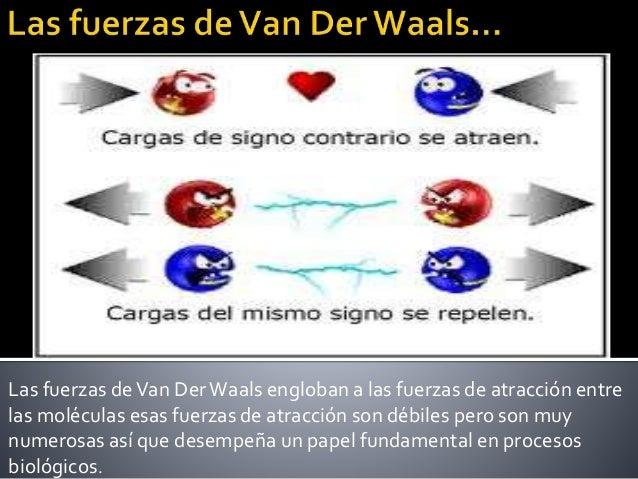 Puente De Hidrogeno Y Fuerza De Van Der Waals