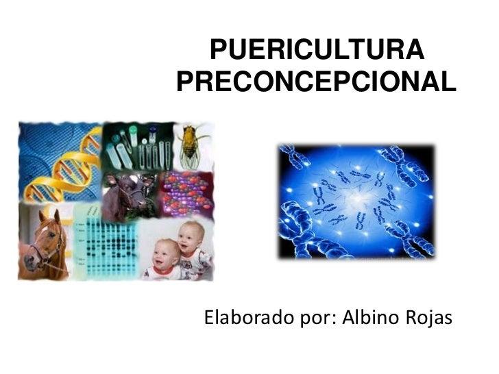 PUERICULTURAPRECONCEPCIONAL Elaborado por: Albino Rojas
