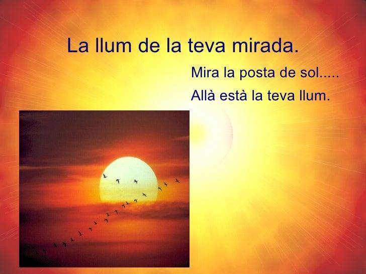 La llum de la teva mirada. <ul><li>Mira la posta de sol.....