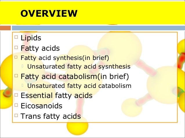 fatty acid sysnthesis