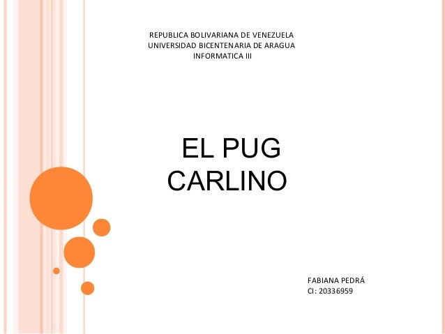 REPUBLICA BOLIVARIANA DE VENEZUELA UNIVERSIDAD BICENTENARIA DE ARAGUA INFORMATICA III  EL PUG CARLINO  FABIANA PEDRÁ CI: 2...