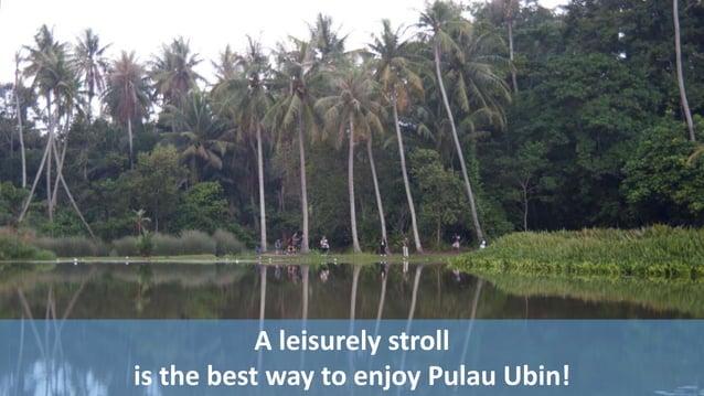 A leisurely stroll  is the best way to enjoy Pulau Ubin!
