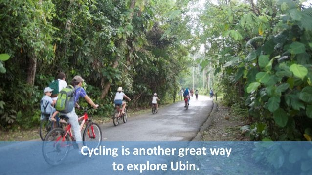 Cycling is another great way  to explore Ubin.
